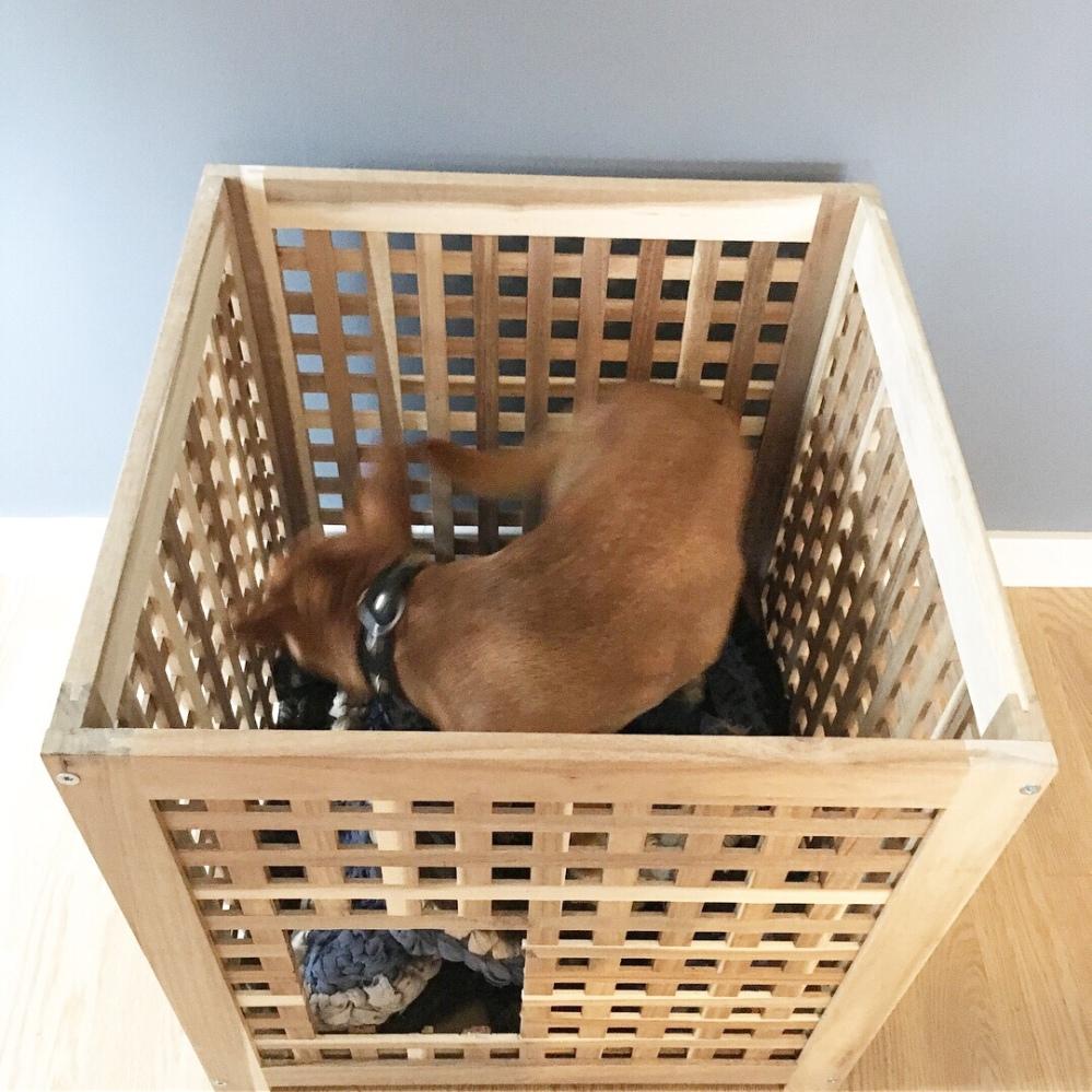 Seng hundeseng ikea hol bord hjemmelaget diy hundebur hundeplass katteseng kaninhule kaninseng gjenbruk gjør selv lage enkelt enkel hol ikea sage hull