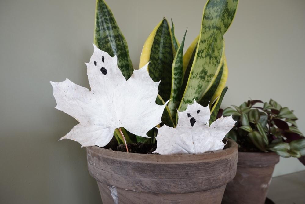 Spøkelsesblader spøkelse maling dit Halloween småbarn kids barnehage svamp pensel motorikk aktivitet forming lek natur naturen svigermorstunge